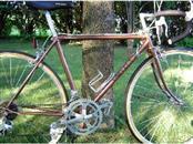 UNIVEGA Road Bicycle NUOVO SPORT